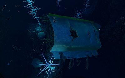 Blood Kelp Wrack