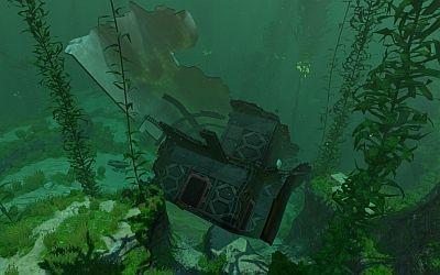 Kelp Forest Wrack