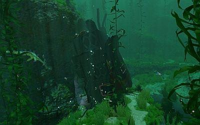 Kelp Forest Wrack 2