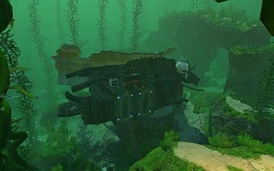 Kelp Forest Wrack 3